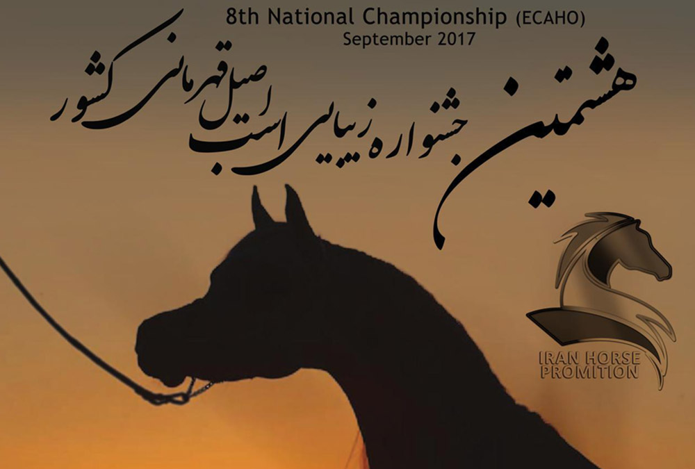 8th National Championship 2017